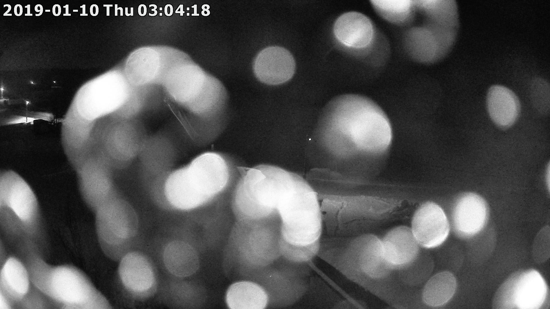 Webkamera ze dne 2019-01-10